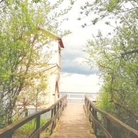Steinhuder Meer Vogelschutzgebiet